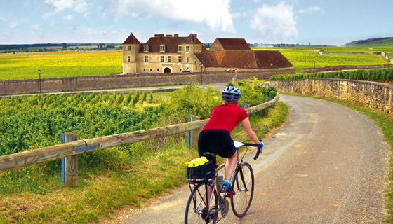 Chablis & Burgundy Biking